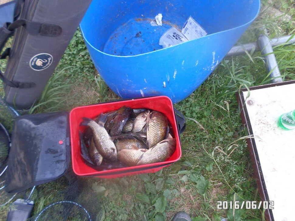 fish_pay_10332256.jpg