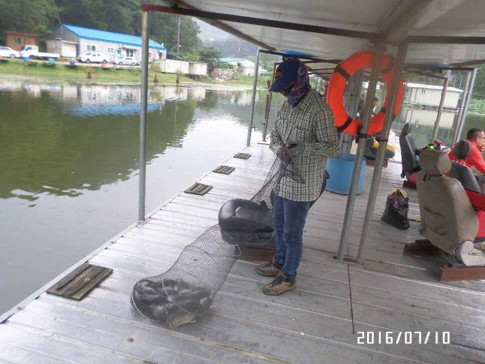 fish_pay_10375675.jpg