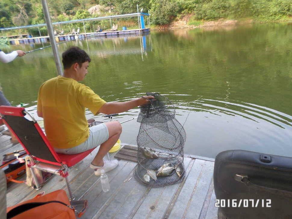 fish_pay_1039535.jpg