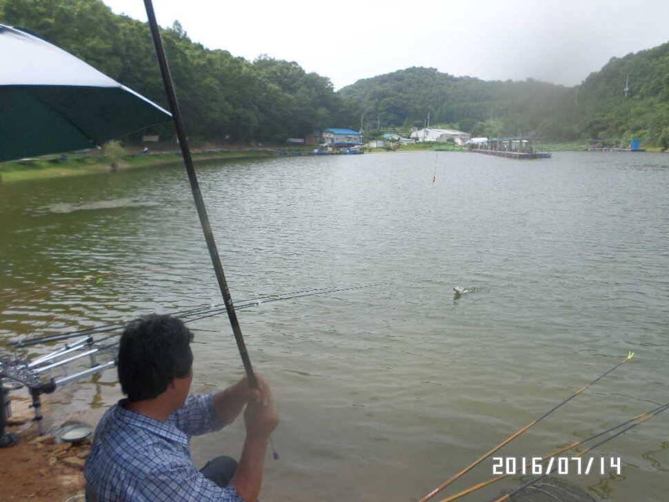 fish_pay_10401447.jpg