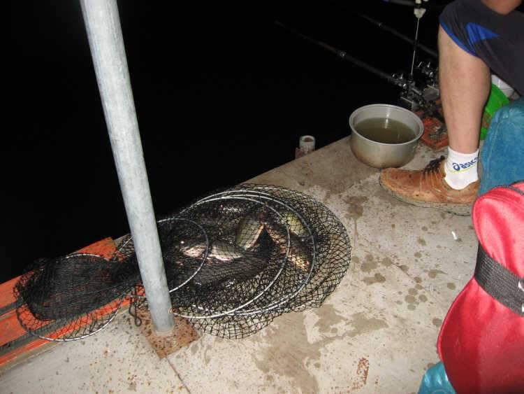 fish_pay_10473867.jpg