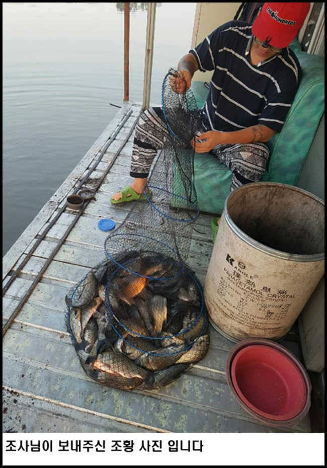 fish_pay_11035249.jpg