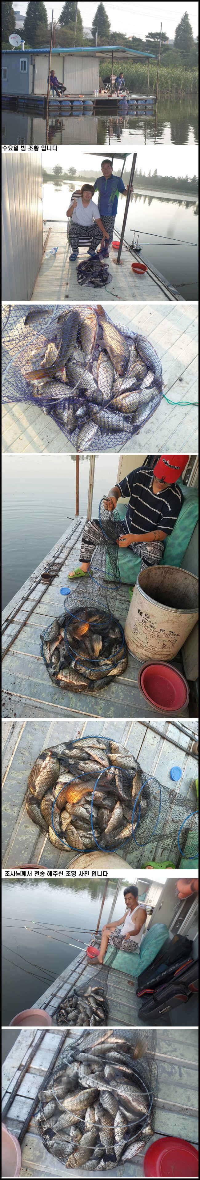 fish_pay_11035562.jpg