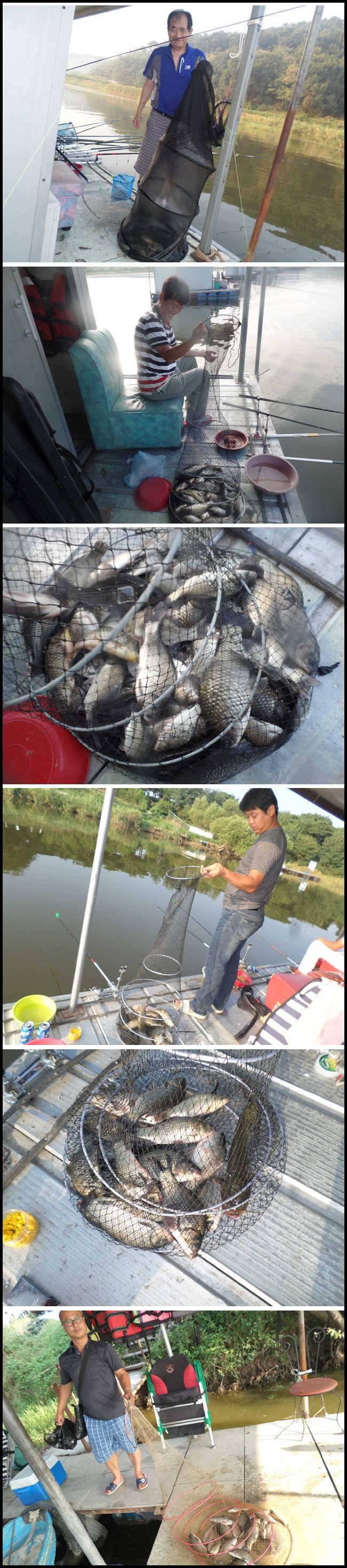 fish_pay_11035818.jpg