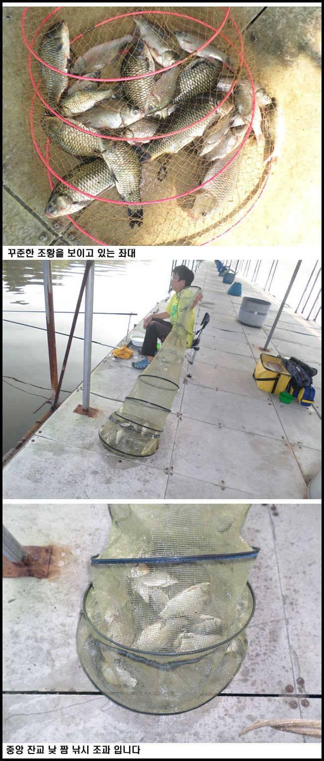 fish_pay_11040123.jpg