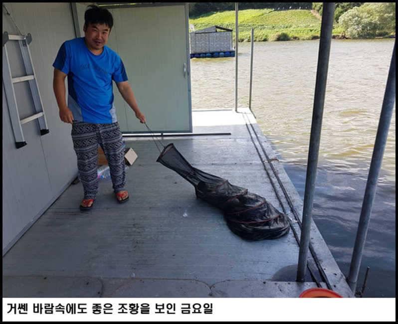 fish_pay_11042276.jpg