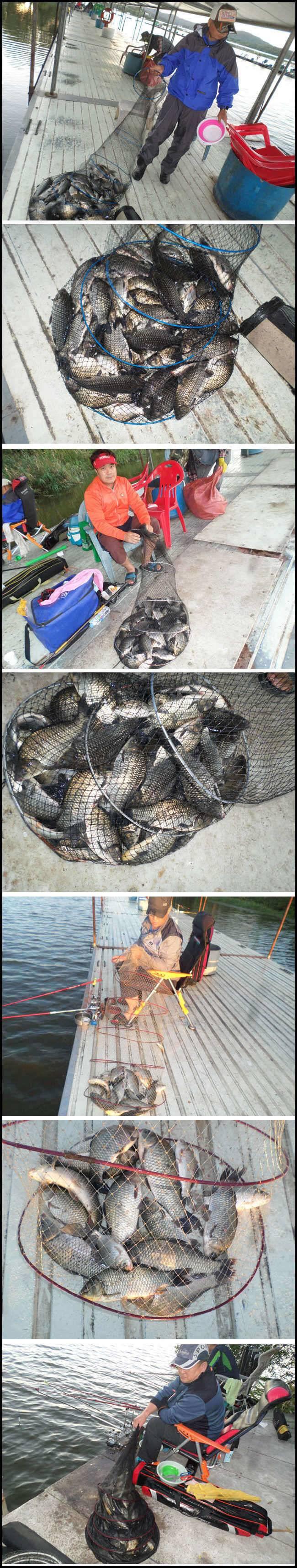 fish_pay_11043582.jpg