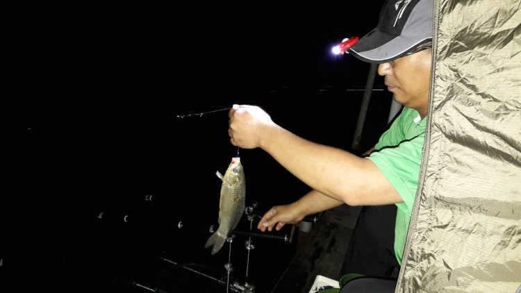 fish_pay_11071695.jpg