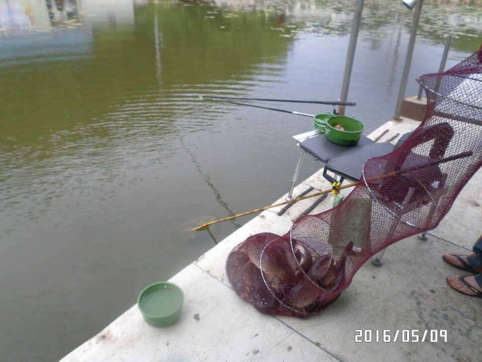 fish_pay_112529100.jpg