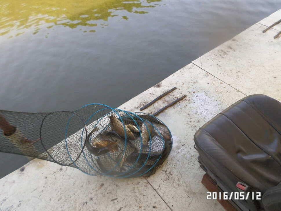 fish_pay_11270770.jpg