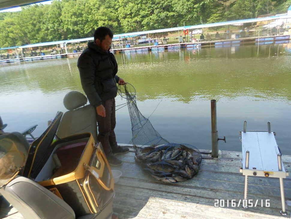 fish_pay_11355956.jpg