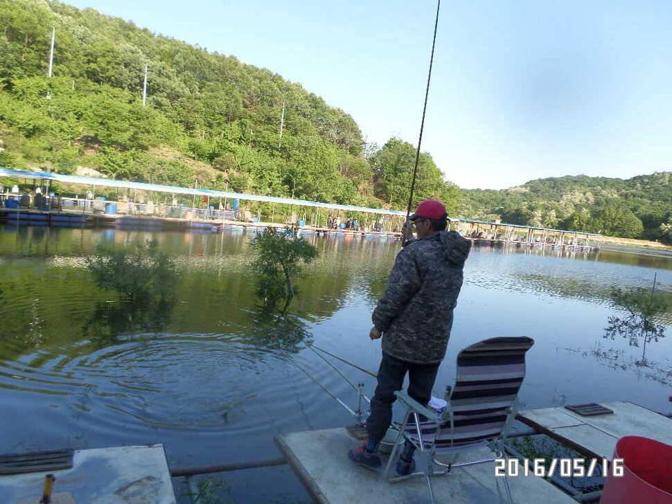 fish_pay_1136121.jpg