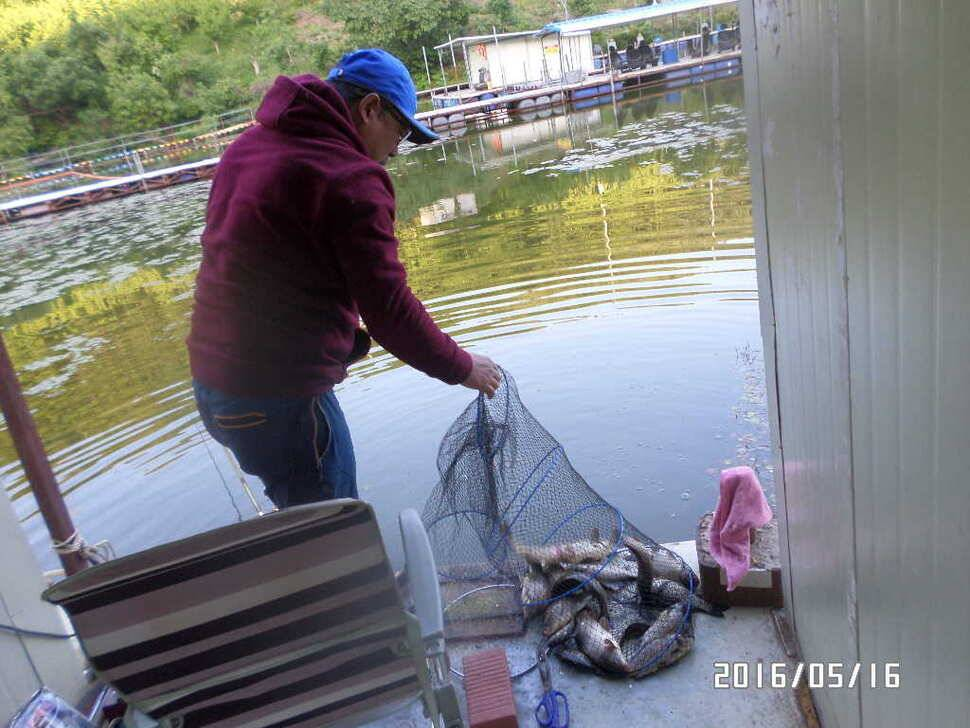 fish_pay_11361689.jpg