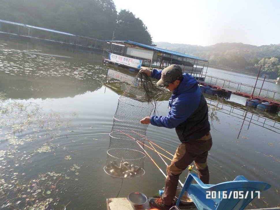 fish_pay_11363315.jpg