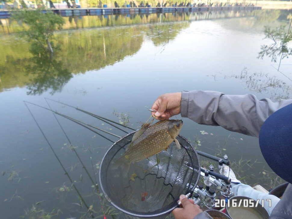 fish_pay_11370650.jpg
