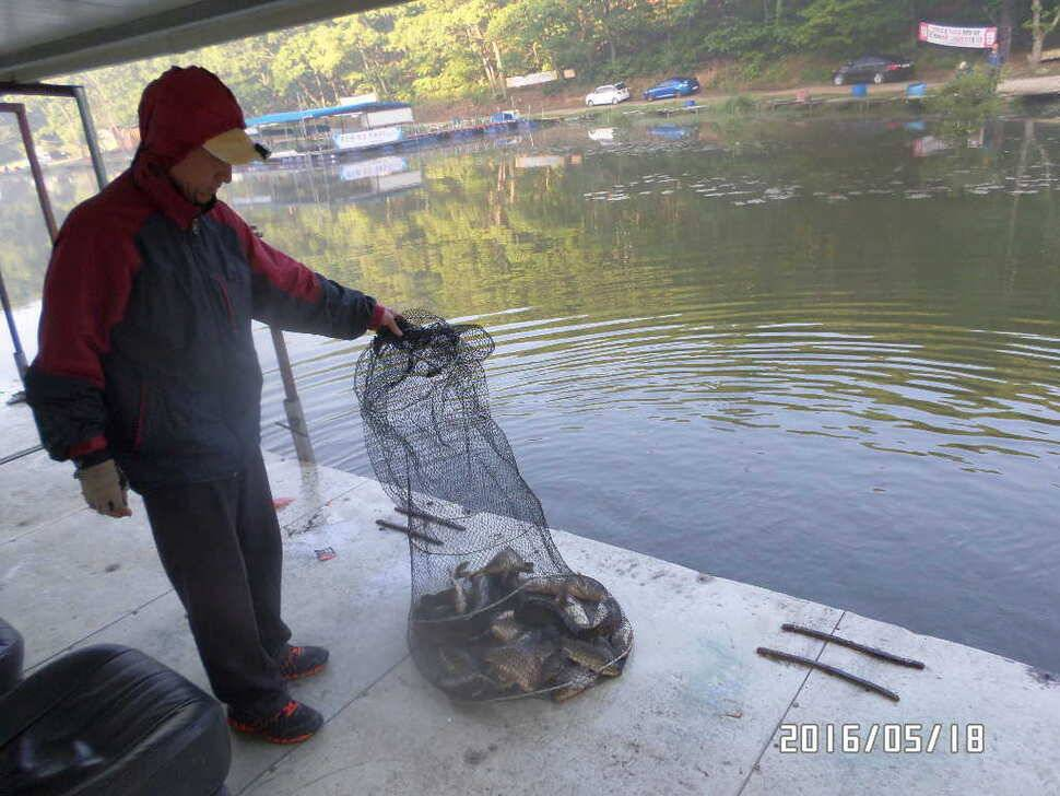 fish_pay_11372114.jpg