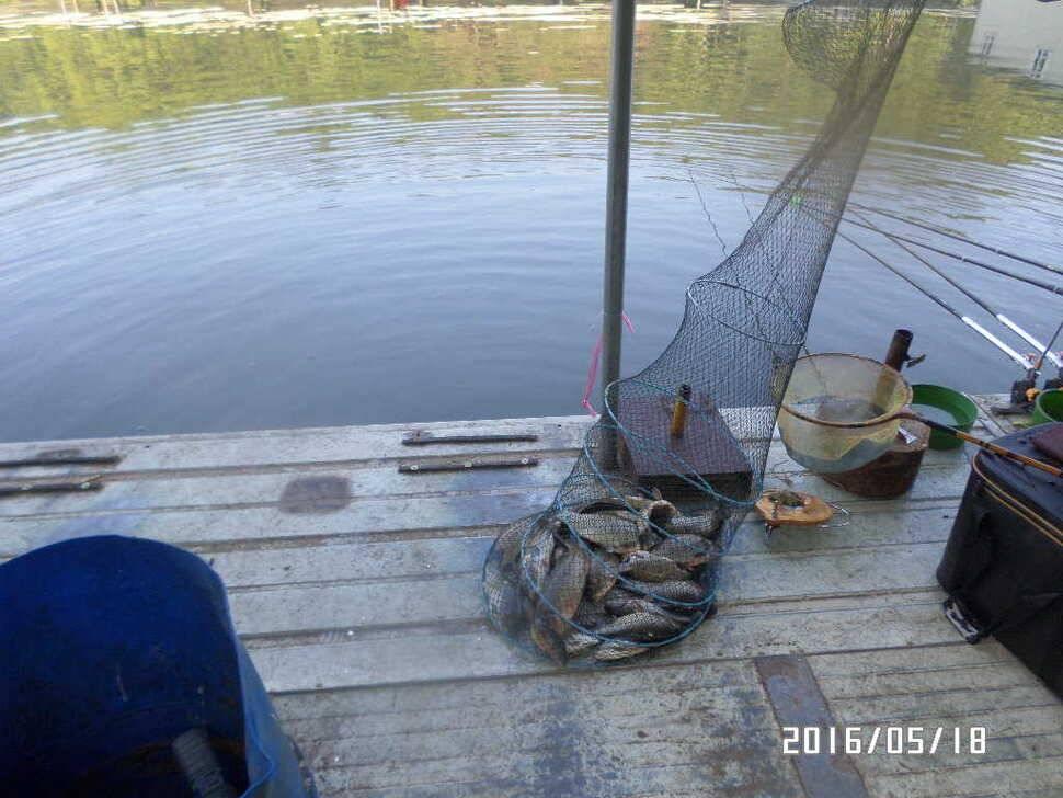 fish_pay_11372755.jpg