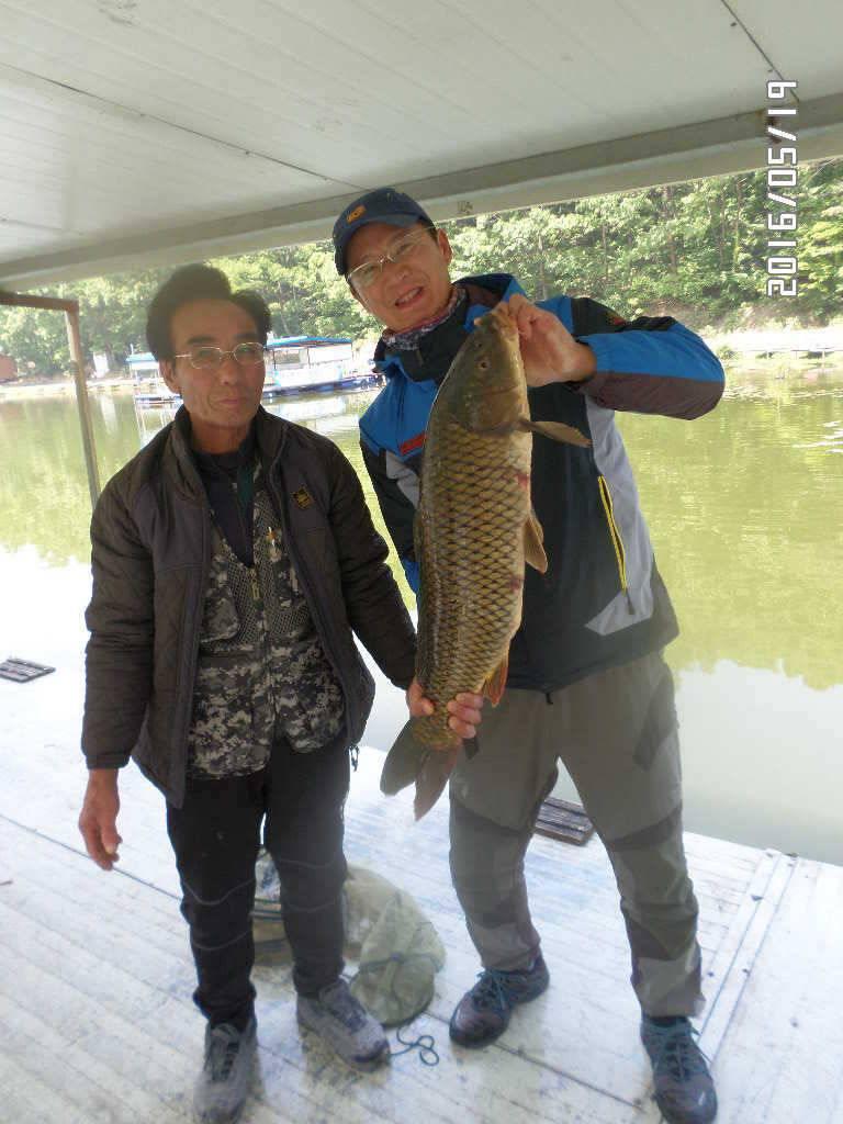 fish_pay_11382518.jpg