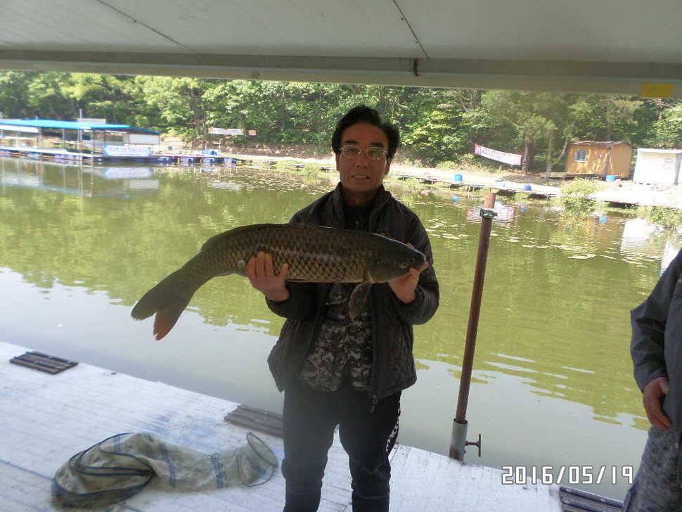 fish_pay_11383134.jpg