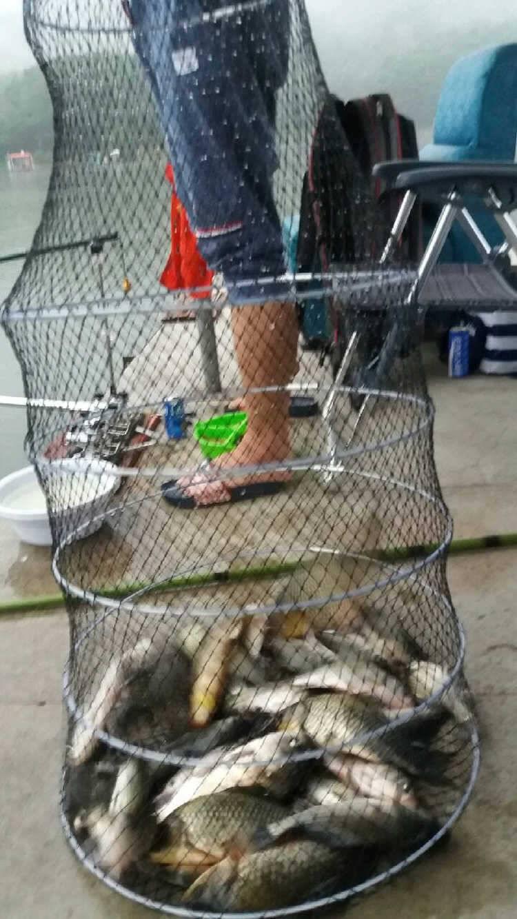 fish_pay_11450511.jpg