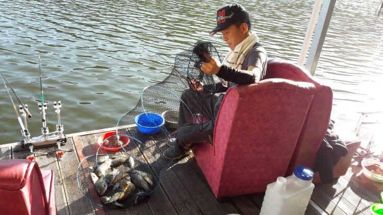 fish_pay_11454076.jpg