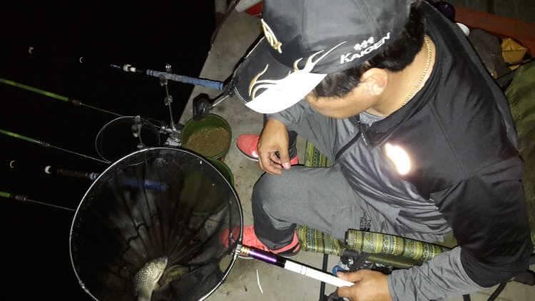 fish_pay_11462890.jpg