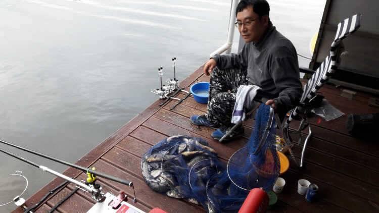 fish_pay_11463521.jpg