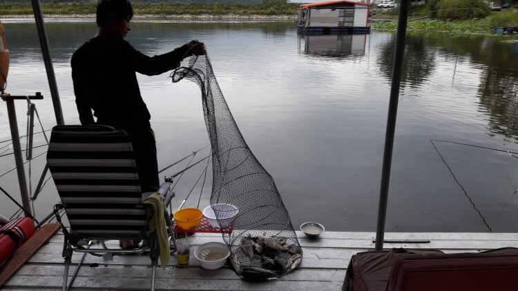 fish_pay_12155478.jpg