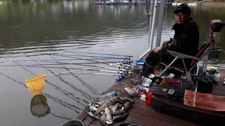 fish_pay_12160536.jpg