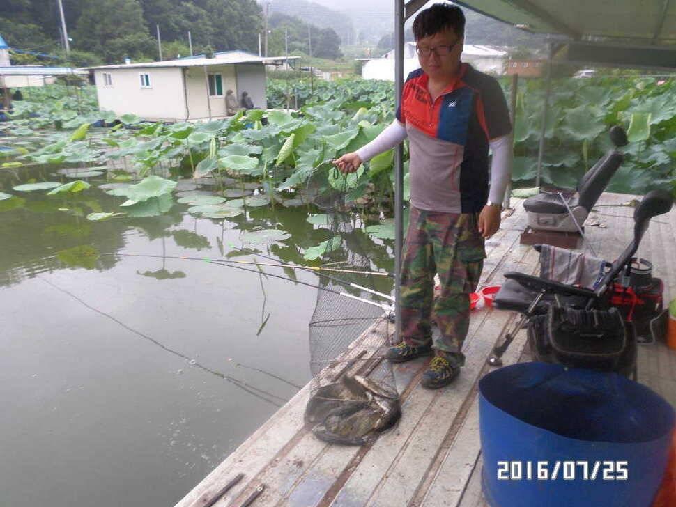 fish_pay_1228317.jpg