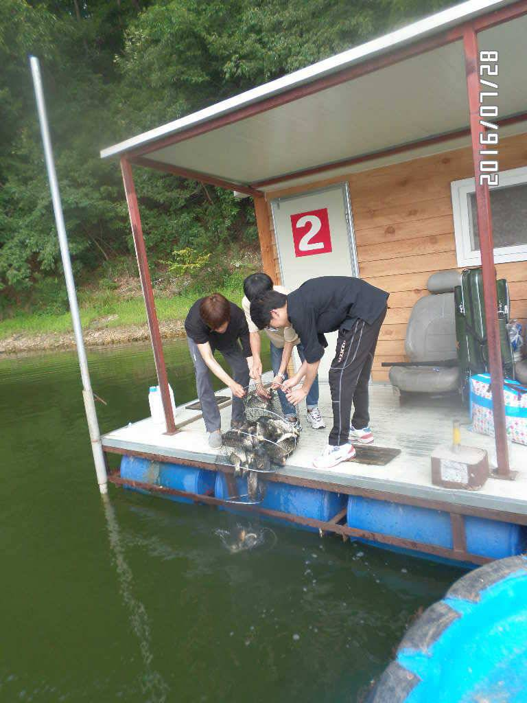 fish_pay_12295479.jpg