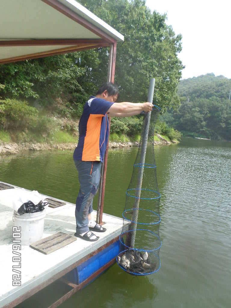 fish_pay_1229589.jpg