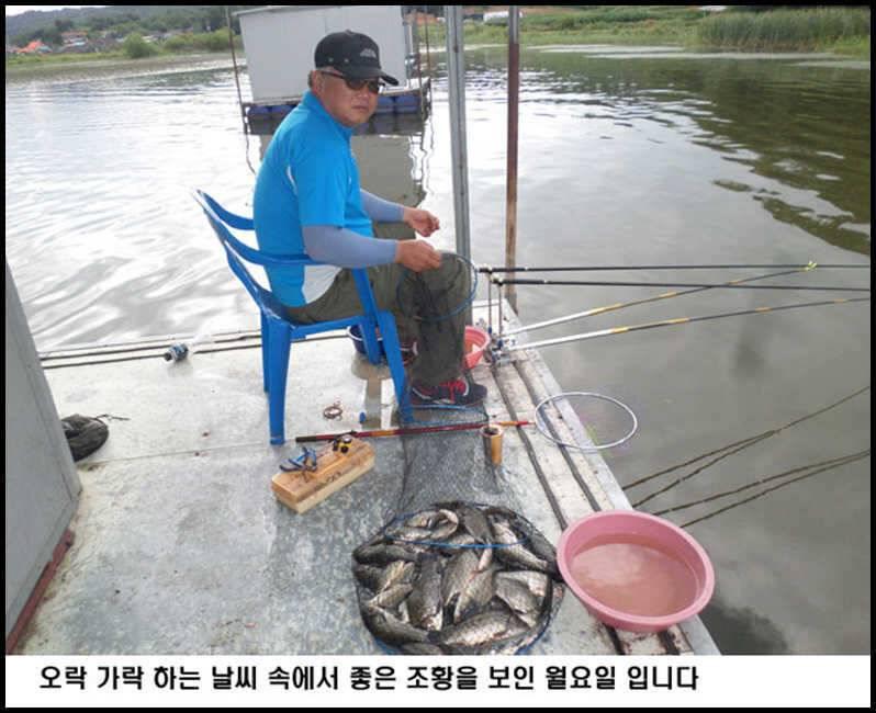 fish_pay_12524411.jpg