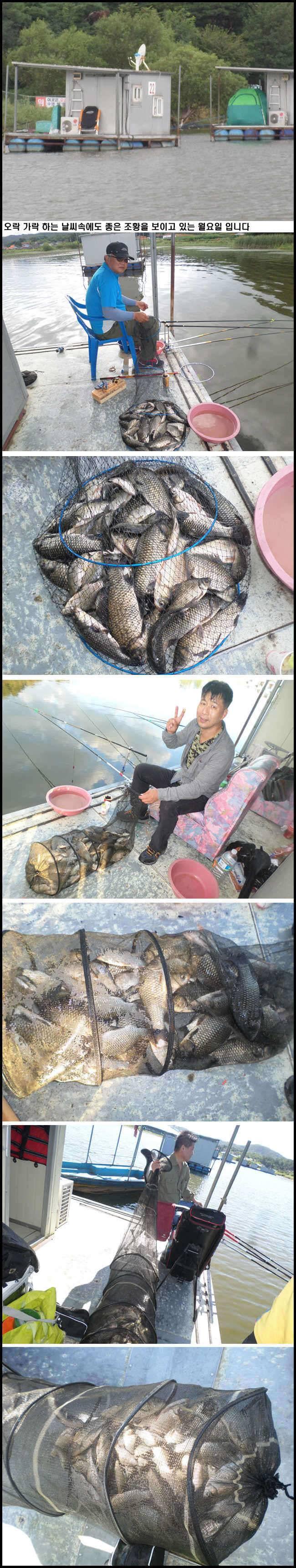 fish_pay_12524842.jpg