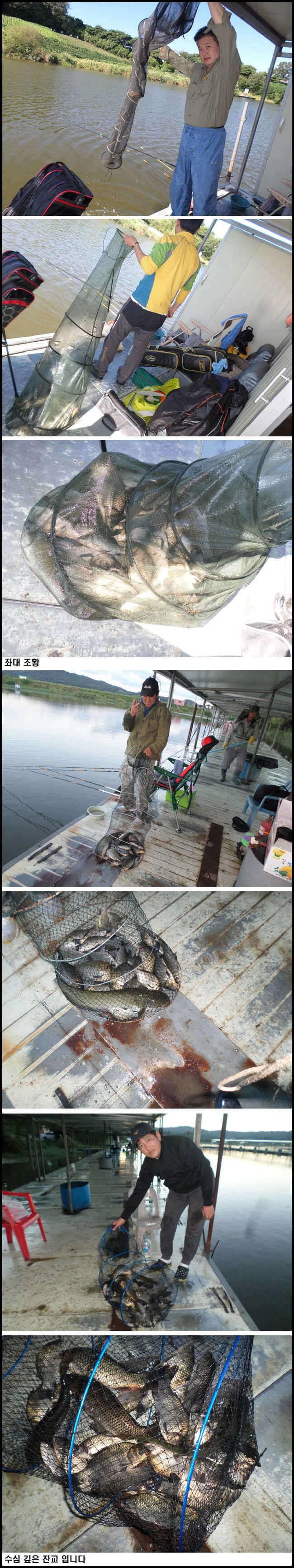 fish_pay_12525125.jpg