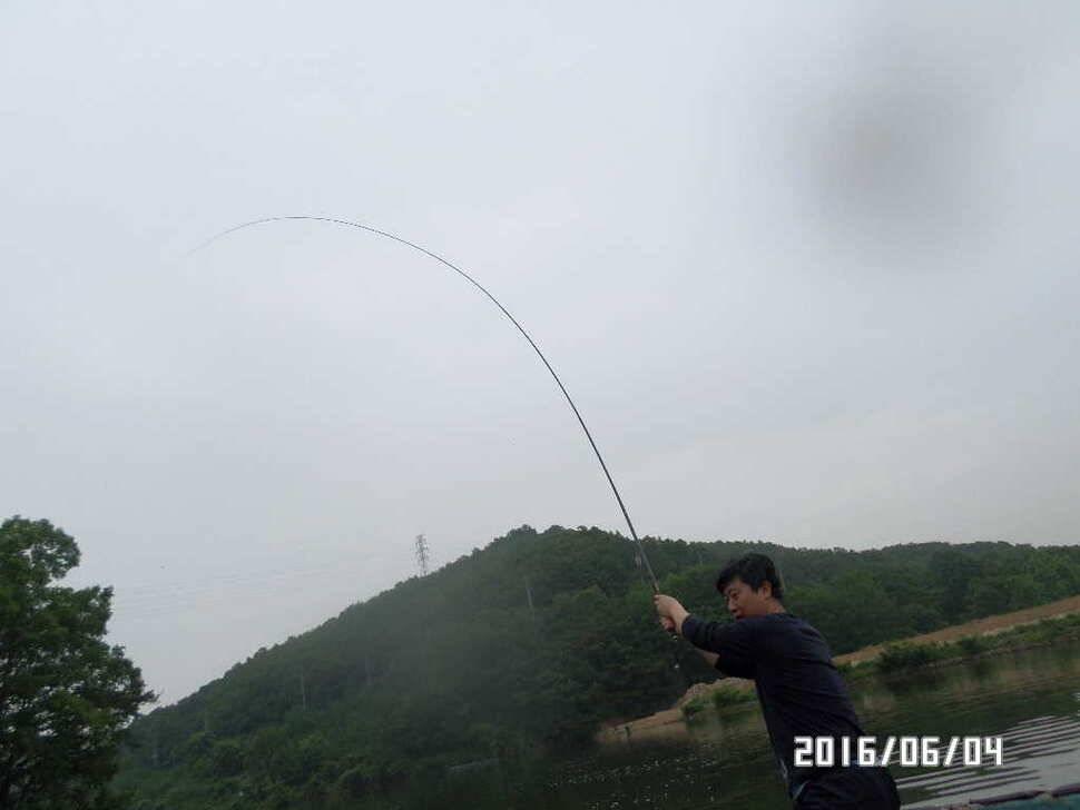 fish_pay_1256155.jpg