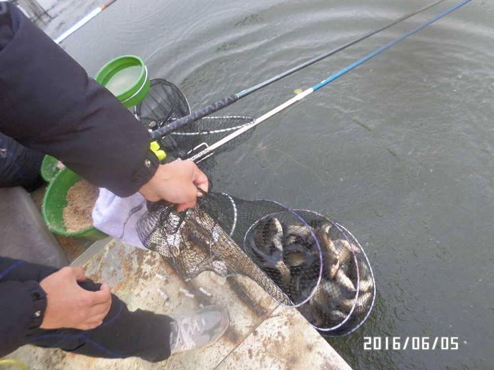 fish_pay_12571947.jpg