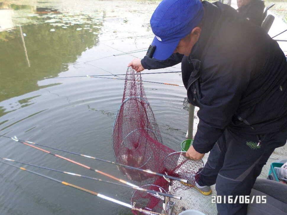 fish_pay_12572337.jpg