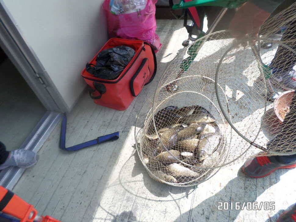 fish_pay_12581251.jpg