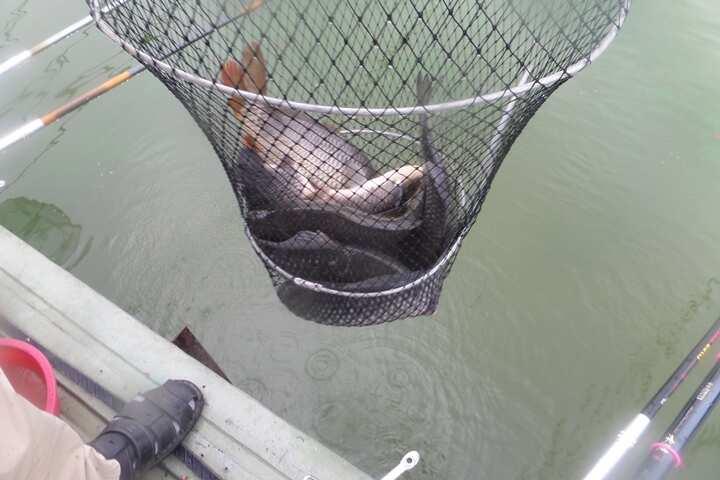 fish_pay_01015113.jpg