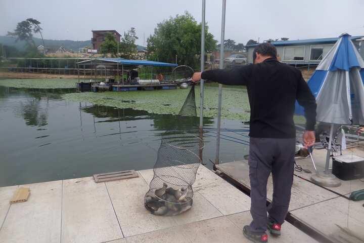 fish_pay_01220686.jpg
