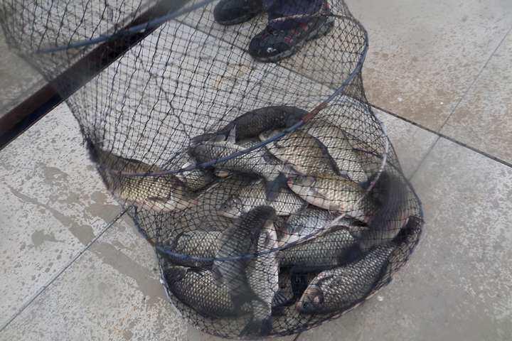 fish_pay_01221159.jpg