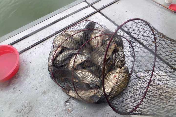 fish_pay_02192786.jpg