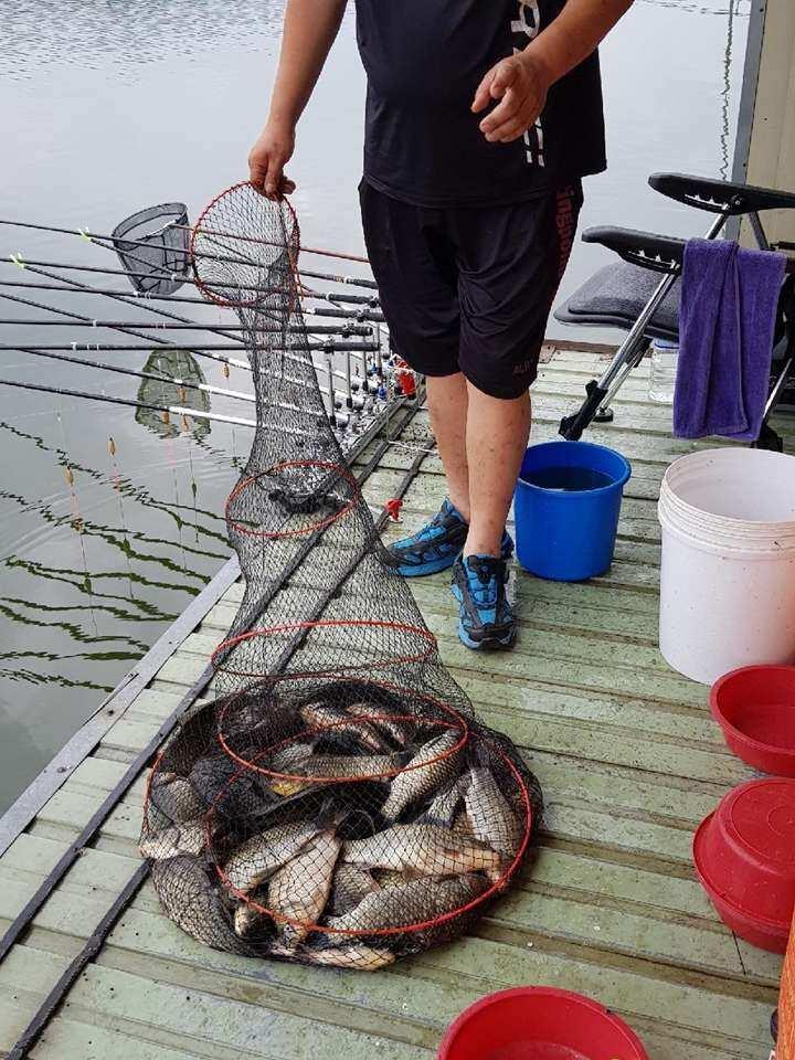 fish_pay_02193257.jpg