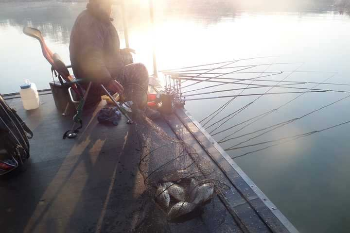 fish_pay_02195888.jpg