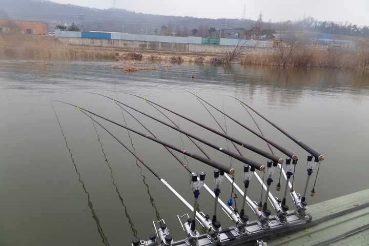 fish_pay_02201834.jpg