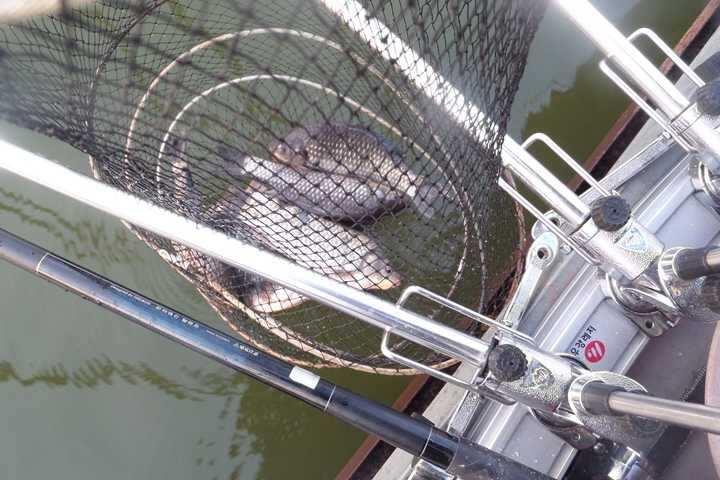 fish_pay_02205882.jpg