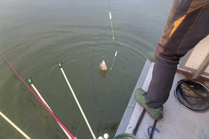fish_pay_02210339.jpg