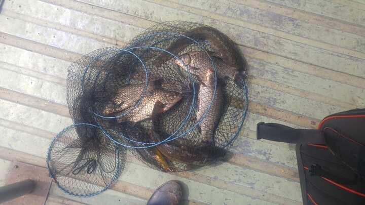 fish_pay_02211793.jpg