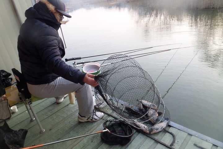 fish_pay_02214055.jpg